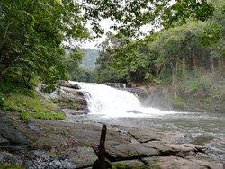Thomankuthu  Falls