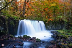 The Autumn stream of Autumn Streams
