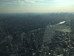 Views of Tokyo from Japan's tallest structure!