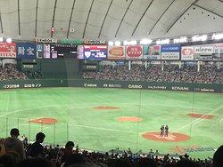 NPB & MLB umpires discussion