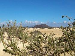 Dune che si buttano in mare