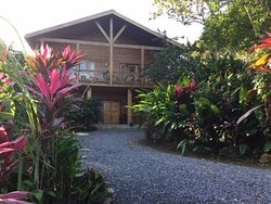 Immaculate tropical gardens await you at Guava Grove House