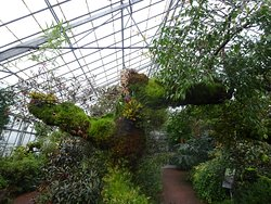 It is the eye for detail in these glasshouses that is truly exceptional.