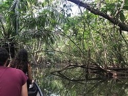 CANOE IN THE  RIO SAN JUAN