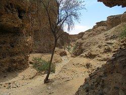 entrée du canyon