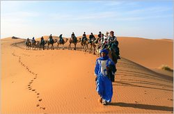 Marrakesh Travel Services