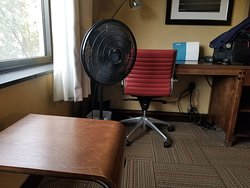 Scratch up furniture, Fan to try to cool the room off and wires that would make the Fire Marshall cringe
