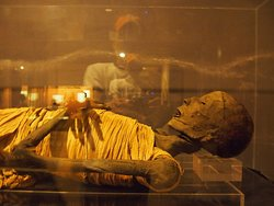 Hall of The mummies in Egyptian Museum