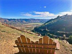 Highland Valley Vineyards near San Diego, CA