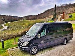 Nice view at Kozlovic winery