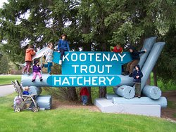 Kootenay Trout Hatchery & Visitor Centre