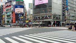 Shibuya Crossing. It wasn't crowded on a Sunday.