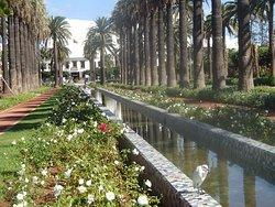Parc de la Ligue Arabe