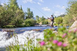The Blue River in Breckenridge is the perfect place to catch and release some hefty Trout! (361654473)