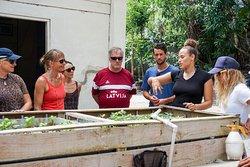 Liz explaining the principles of aquaponics