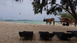 View from Ocean Lodge - Baie de Sakalava - Antsiranana (Diego Suarez) Madagaskar