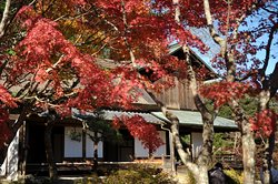 Kinko Garden