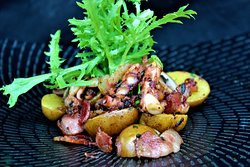Octopus, baby potatoes, bacon, parsley, onion, lime jus, frisee salad.