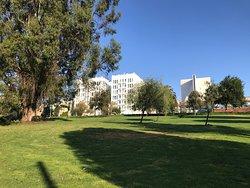 Jefferson Square Park