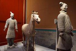 Guerreiros de Terracota em exposição