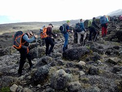 Machame route is the best route for the Kilimanjaro climbers, please fee free to contact us though www.kilimanjaro-kizimba.com
