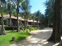 Resort playa