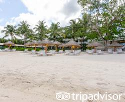 Beach at the Presidente Inter-Continental Cozumel Resort & Spa