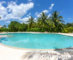 The Pool at the Presidente Inter-Continental Cozumel Resort & Spa