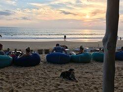 Beanbags on the beach.
