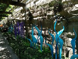 Summer 2018 during Chihuly Exhibit.