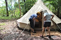 spacious tent, sand fly proof