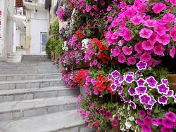 stairs to hotel