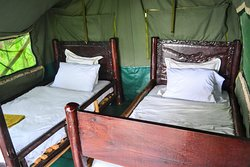Twin beds in Luxury Tent