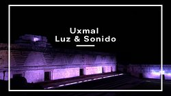 No plan at night in Merida? Check out this experience with us!