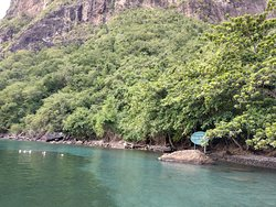 Diving spot at protected Marine Reserve