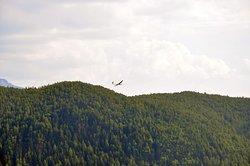 Modellflugzeug bei Pension Hatzis