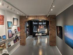 Alexander Palm .Gallery