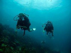 Buceo - Centro de buceo Coveñas Diving