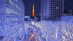 Turning On the Lights: Our guide to Tokyo's best winter illuminations. ow.ly/ftL230muNrR