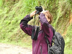 Observando variedad de aves... carismáticas tángaras, carpinteros, colibríes, entre otros fabulosos pájaros que se encuentran en el recorrido