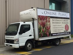Buy Plants from Online Plants Melbourne.