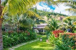 Resort Lush Garden