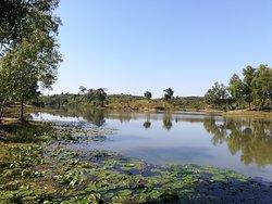 walk tour in a tea garden closed to the lake ( Sreemangal)