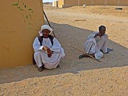 Kamelmarkt Al Shalateen