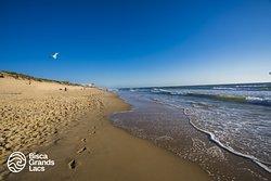 Sable fin à perte de vue, beach breaks réputés pour le surf, vent dans les cheveux, couchers de soleil de cinéma... les plages du littoral de Biscarrosse sont à la hauteur de leur réputation.