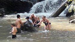 Elephant bathe at Blue Tao