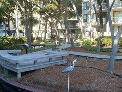 Marriott Monarch at Sea Pines