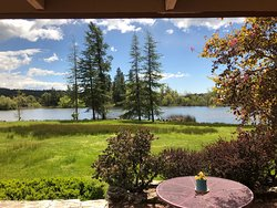 This is the view from the Rose Room overlooking the lake.