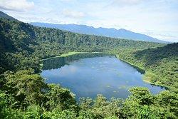 Refugio de Vida Silvestre Bosque Alegre