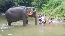 Shower with elephant
